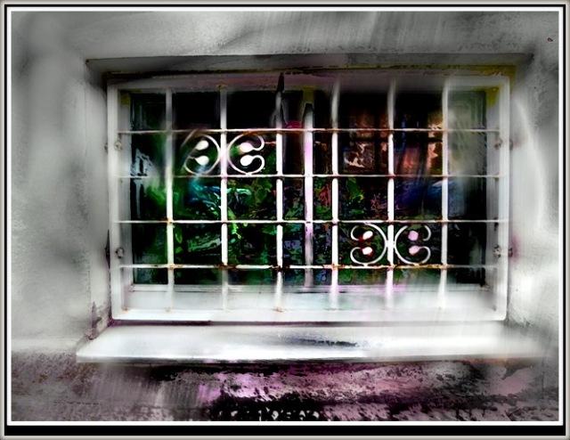 window IMG_8448